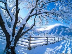 tél, hó, tanya